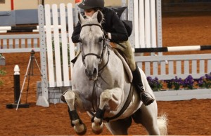 Mallory Myers of Sharon Center, Ohio, rides Darn That Kat in competition of the AQHYA World Championship Show in 2013. Photo by and courtesy of The American Quarter Horse Journal.